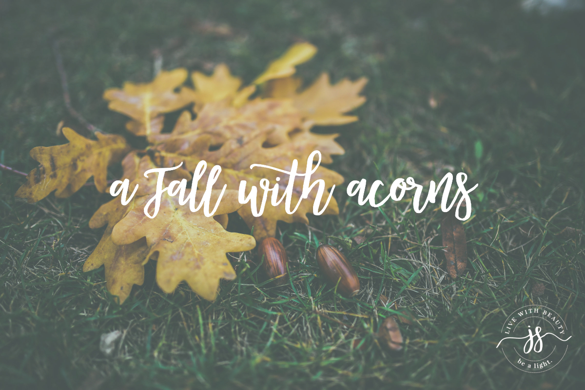 A Fall with Acorns